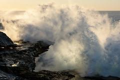 SURGE AND EXPLODE (scatrd) Tags: wavescape nikon mynikonlife australia sydney nsw maroubra 2017 wave rockledge easternsuburbs newsouthwales jasonbruth coastal nikond810 afsnikkor70200f28gedvrii d810 country mahonpool au