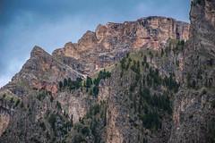 Mountainside Forest (bjorbrei) Tags: mountain vallunga selva valgardena gherdëina gröden wolkenstein tyrol tirol tirolo dolomites dolomiten dolomiti italiy italia spruces