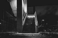Choose wisely (Jordan Miller | Propagandaphoto.net) Tags: portland night longexposure bnw blackandwhite urban city rosecity staircase