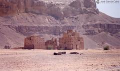 199909 Yemen Hadramaut (97) (Nikobo3) Tags: asia orientemedio arábiga arabia penínsulaarábiga yemen hadramaut desierto desiertoramlatassabatayn culturas travel viajes fujicolorsuperia100iso película nikobo joségarcíacobo urban street nikon nikonf70 f70 sigma70300456