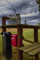 IMG_4335 (mikkelschreiber) Tags: vesljunga sweden sverige landscape nature forrest flower milk cans sky red mail box natural light clouds outside canon eos natur wolken