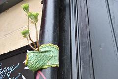 Anonyme (emilyD98) Tags: street art insolite paris mur wall 75013 13ème 13 ème la butte aux cailles gouttière tuyau tricot pot fleurs flowers plante plant artiste anonyme city ville urban exploration