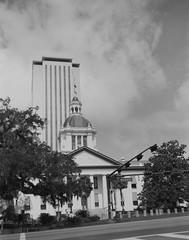 Tallahassee Capitol (Jacob Gralton) Tags: florida tallahassee capitol politics street photography large format 4x5 ilford