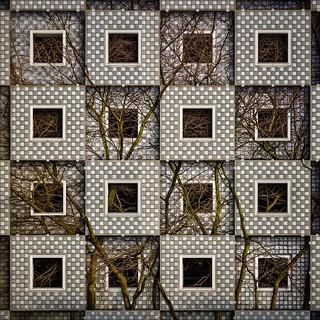 Entangled Squares