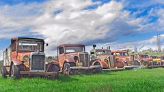 Old Cars in a Row 4846 B (jim.choate59) Tags: antique antiquecars oldcars vintage grassvalleyoregon rust abandoned auto collector decay rx100 on1pics