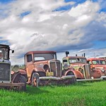 Old Cars in a Row 4846 B thumbnail
