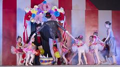 DJT_7268 (David J. Thomas) Tags: carnival dance ballet tap hiphip jazz clogging northarkansasdancetheater nadt mountainview arkansas elementaryschool performance recital circus