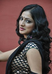 Indian Actress Haripriya Hot Sexy Images Set-2  (90)