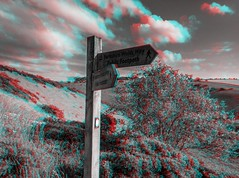 Millington Dale 3D anaglyph (Mister Electron) Tags: stereo anaglyph redcyan 3d monchrome blackandwhite bw millingtondale yorkshire eastyorkshire landscape signpost woldsway yorkshirewolds walkingtrail countryside rural