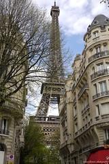 Paris, takes it all.