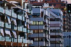 Calle Luis Legaz Lacambra (portalealba) Tags: zaragoza aragon españa spain portalealba canon eos1300d