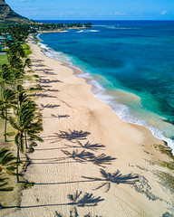 Early Morning Oahu Shadows (tburt50) Tags: beach ocean pacific coconut tree shadow blue sand honolulu oahu hawaii dji mavic pro tropical island
