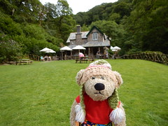 Watersmeet, Devon (Sa//y) Tags: teddy bear watersmeet devon nationaltrust