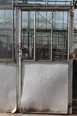 (mennomenno.) Tags: kassen greenhouse deur door