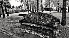 TAKE A REST  #bench #stone #trees #village #rest #break #path #schwarzweiß #blackandwhite #Photographie #photography (benicturesblackwhite) Tags: blackandwhite stone path bench break photography schwarzweis rest village photographie trees