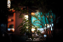 From Smoking area (gol-G) Tags: fujifilm xt20 fujifilmxt20 digital carlzeiss zeissplanar50mmf14 planar1450zk color japan kobe bokeh 玉ボケ night 夜