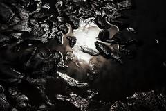 Reflet sable (oliviercharpentier) Tags: reflet sable plage soleil pétrole oleron île