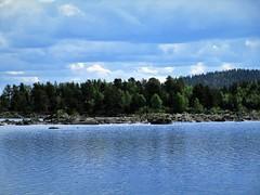www.ilkkajukarainen.fi (www.ilkkajukarainen.fi) Tags: nature luonto travel traveling matkailu happylife museumstuff inari inarinjärvi lake järvi water vesi suomi finland suomi100 eu europa inarin threes puut
