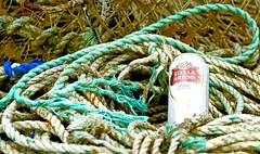 RopeyBeer (Hodd1350) Tags: christchurch dorset mudeford mudefordquay rope beercan emptycan lager greenrope sony sonylens a7rll sonyfe70300