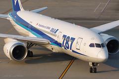 JA804A (arsenalflag_1109) Tags: airplane aviation allnipponairways boeing787 hanedaairport tokyo