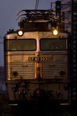 DSC1958 (nEUROn FL) Tags: railway train freighttrain ef81 kagoshimaline fukuoka jr貨物 銀釜 鹿児島本線 貨物列車