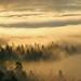 headed back to Jackson Hole (hennessy.barb) Tags: yellowstonenationalpark yellowstone landscape clouds morninglight ynp jacksonhole wilderness nature morning magic magical