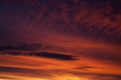 IMGL3889_DxO (baptisteflageul) Tags: couchedesoleil sunset soir evening soleil sun nuages clouds cloudporn ciel sky skyporn orange rouge red jaune yellow wow nature paysage landscape bleu bluehour blue paris france urbain urban