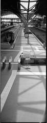 Roll 203 arcos Xpan 45mm439 (.Damo.) Tags: 24x65 45mmf4 roll203 acros analogue city epson epsonv700 film filmisnotdead fuji fujiacros100 hasselblad ilfordddx ilfordrapidfixer ilfostop iso100 melbourne melbournesilvermine msm panorama panoramarama panoramic patersontank samigonreels selfdevelopedfilm xexportx xpan