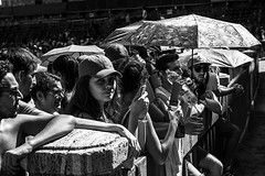 Palio Siena (PGKreling) Tags: palio siena italy blackandwhite bw monochrome contrast people crowd nikon d800 street streetphotography urban