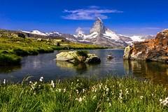 Matterhorn (sylviafurrer) Tags: berge mountain mountainlake bergsee matterhorn stellisee alpen alps water wasser switzerland