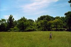 Les champs de Van Gogh (jevidal) Tags: monastère saintpaul mausole monastary vangogh saintrémydeprovence provence