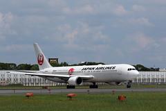 UP3A4822 (ken1_japan) Tags: 大阪国際空港 伊丹空港 itm 伊丹スカイパーク スカイランドハラダ japan osaka airplane ana jal canon 7dmkⅱ ef70200mm f28lisiiusm