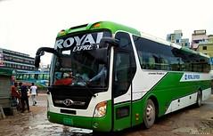 Royal Express Hyundai Universe (CKD) (Cms Rayhan Raz) Tags: buses bangladeshibus busesofbangladesh hyundai hyundaibus royalexpress
