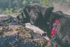 Cortana at Judge C.R. Magney State Park (Tony Webster) Tags: cortana judgecrmagneystatepark minnesota northshore dog hiking grandmarais unitedstates us