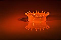 Crown Jewels (Kevin Rheese) Tags: macromondays coronet crown drip drop queen splash