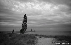 Overcast Evening (mswan777) Tags: seascape outdoor nature lake michigan water grass dune tree beach sand scenic ansel monochrome black white nikon d5100 sigma 1020mm lighthouse pier sky cloud still horizon