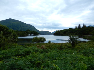 Lake view at Muckross Park, Kerry, Ireland