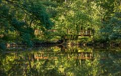 Reflections of a Bridge (Karol A Olson) Tags: lakekittamaqundi columbia maryland lake reflection pedestrianwalk trees jul17