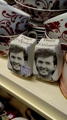 Daniel O'Donnell (the justified sinner) Tags: justifiedsinner danielodonnell saltandpepper ceramics thriftstore charity shop bearwood birmingham westmidlands