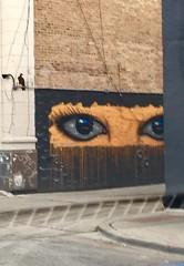 Street Art - Chicago (Larry Wilkin) Tags: wickerpark chicago graffiti streetart mural wall cityscape city iphone photo