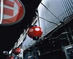 Temptation of RED (YUKIHAL) Tags: pentax67 smc p67 55mm f4 rdpiii fujifilm film provia100f 120 mediumformat analog 67 6x7 pentax