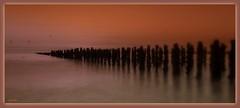 A la nuit tombante ..... (Armelle85) Tags: extérieur nature paysage nuit crépuscule coucher de soleil sunset eau mer océan horizon