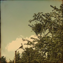 Summer day (sergiochubby) Tags: green summer day happy mood cloud tranquility lamppost happyness outdoor landscape serene plant foliage nostalgia warm tree sky