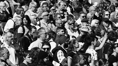 Carnival 2017 073 (byronv2) Tags: carnival carnival2017 edinburghfestivalcarnival edinburghfestivalcarnival2017 edinburghjazzbluesfestival edinburghjazzbluesfestival2017 festival newtown princesstreet princesstreetgardens edinburgh edimbourg scotland peoplewatching candid street performer park gardens blackandwhite blackwhite bw monochrome crowd group audience rossbandstand bandstand