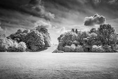 Mountsfield Park (blackwoodse6) Tags: monochrome clouds trees sky foilage nikon park vignette vignetting blackandwhite mountsfieldpark catford london southlondon southeastlondon nikond40