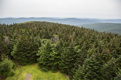 Views from the fire tower at Balsam Lake Mountain, quite amazing (DavezPicts) Tags: 3500 catskills nature hike mountain tower firetower landscape bigindian ny