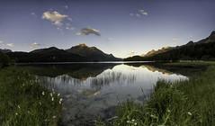 Morning reflection (Martin Häfeli Photography) Tags: switzerland upperengadin engadin silsersee nikon d7200 morning silence reflections mirror
