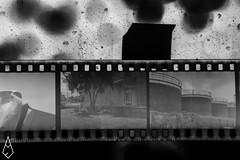 02 (andrea.fogliacco) Tags: film pellicola ilford fp4 plus sviluppo rullini vintage black white develop developed reflex old school vecchia scuola