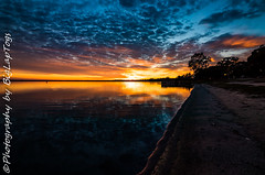 IMG_5919 (biglaptogs) Tags: barmera lakebonney riverland sa states sunsetsunrise