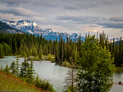 4008 Banff Landscape_Paule Hjertaas (paule48) Tags: ab alberta banff bowriver canada castlemountain weather clouds landscape mountain
